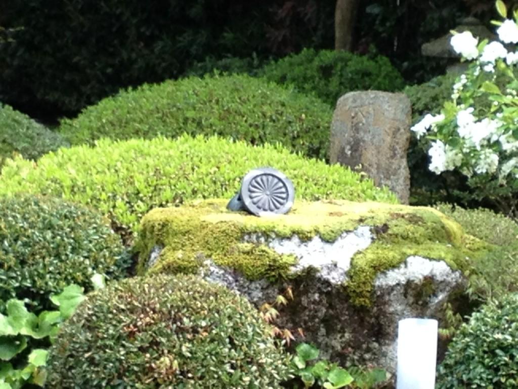 雲龍院庭園(菊の紋瓦)